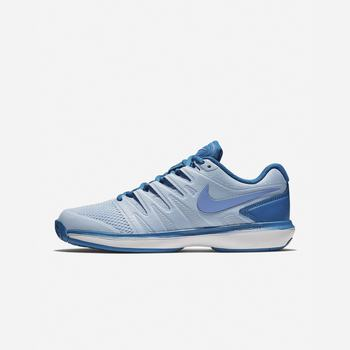 Nike Court Air Zoom Prestige Hard Court - Kraliyet Mavisi